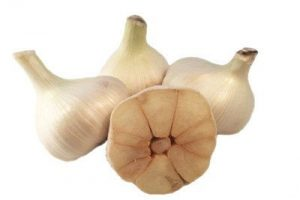 ELEPHANT GARLIC - Grown by August's Harvest