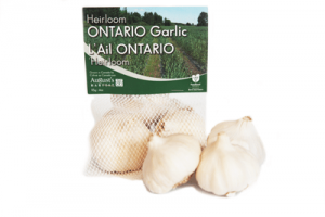 HEIRLOOM ONTARIO GARLIC